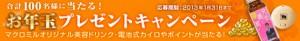 maot2013_banner