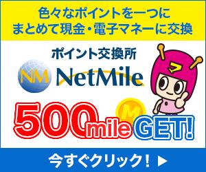 NETMILE_300_250
