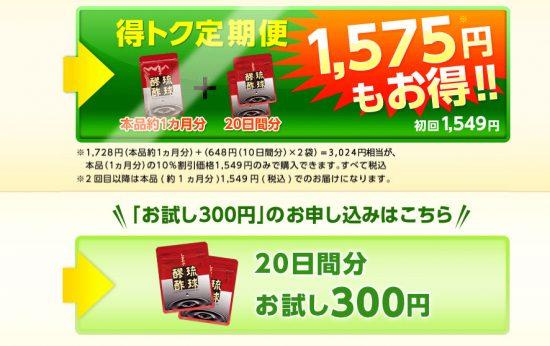 お試し300円の方を選択