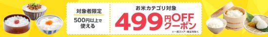 499円OFFクーピン